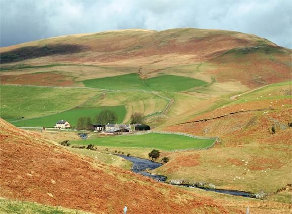 Upper Coquetdale Notecard